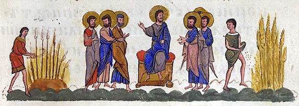 Pilda Semanatorului, Trnovo 1356 IN